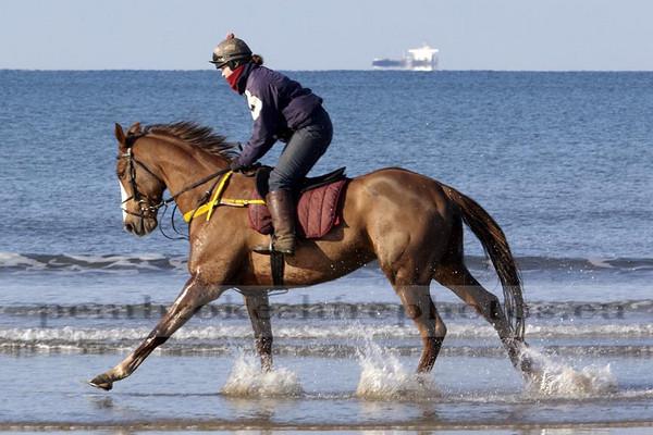 Exercising horses, Broadhaven North Beach.