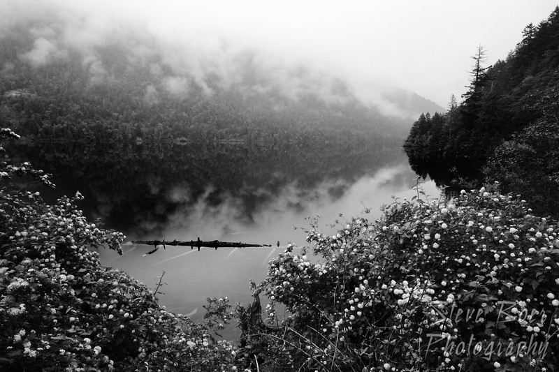 Foggy Larry Lake
