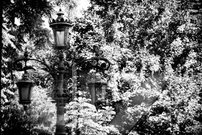 Opposite the Botanic Gardens, Antwerp