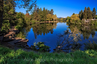 Lovely Morning On Mirror Pond., Bend, Oregon - 1