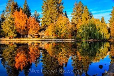 Reflections Of Autumn, Mirror Pond, Bend, Oregon - 5
