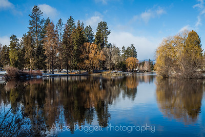 A Sunny Winter Day, Mirror Pond, Bend, Oregon - 9