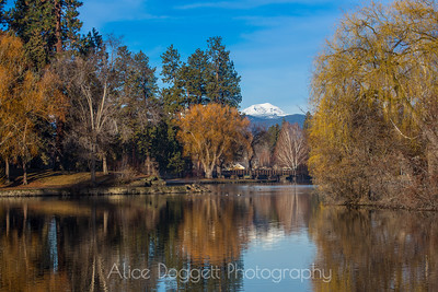 More Reflections of Winter Colors, Mirror Pond, Bend, Oregon - 8