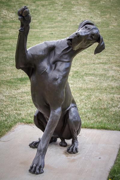 Benson Sculpture Park