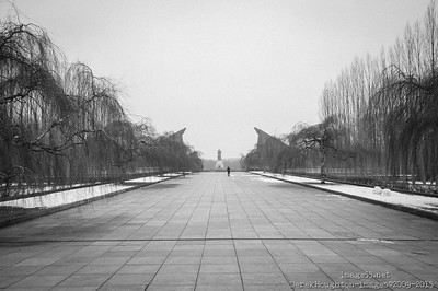 20150207-_DHI6143
