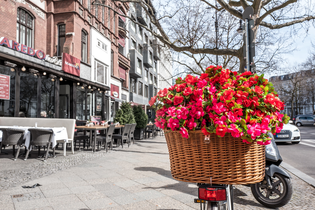 A bicycle with flowers in Berlin