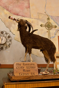 Clay Henry, the beer drinking goat, was elected as Mayor of Lajitas, Texas in 1986.  His son and grandson carried on his proud tradition of public service and both served as Mayor of Lajitas also.