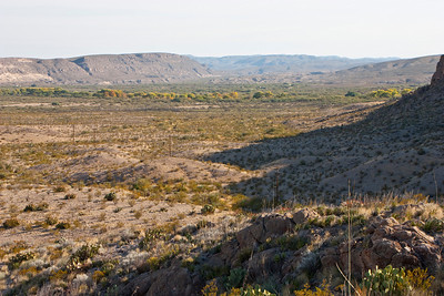 Rio Grande river valley.  When you see trees in the desert you know there is a source of water nearby.  In this case, the Rio Grande is the source of water for these trees.