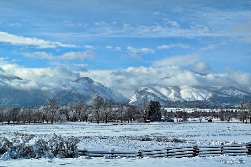 winter near daly