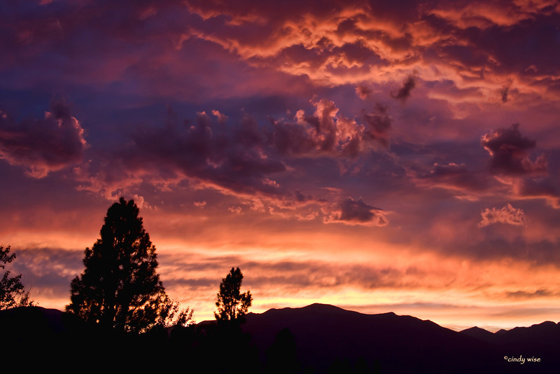 sunset 8518