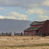 red barn ~ stevi
