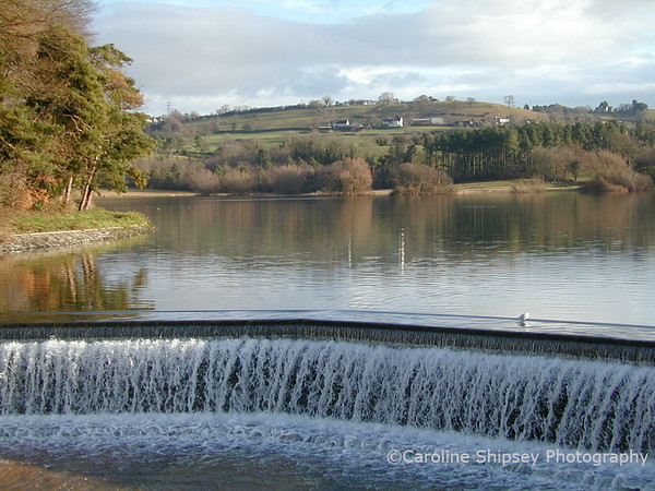 The Bywash, Blagdon Lake