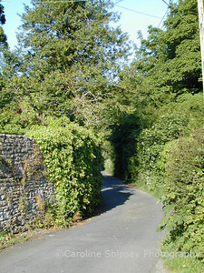 Grib Lane, showing characteristic high stone walls