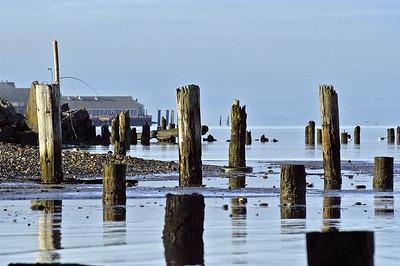Drayton Harbor