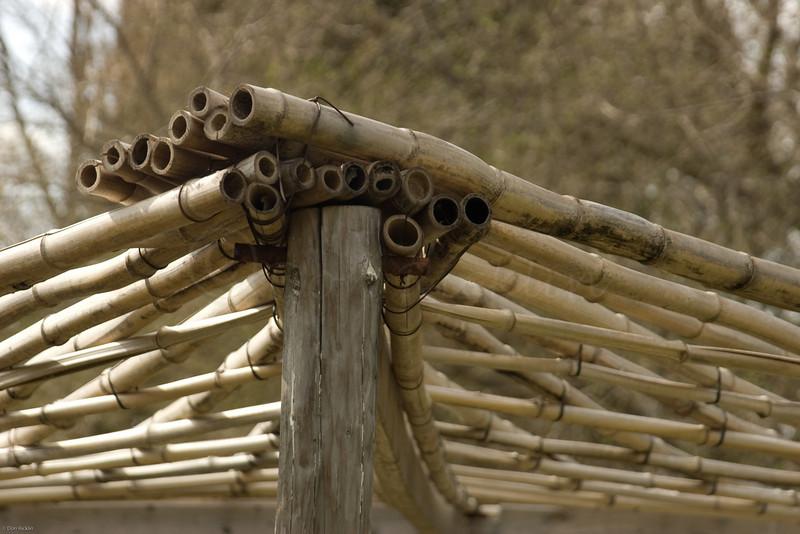 Bamboo pergola.