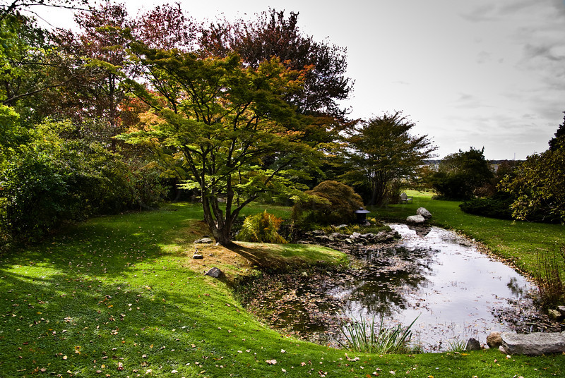 Stone bridge and lily ponds.
