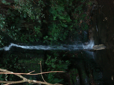 Marguerite cascades