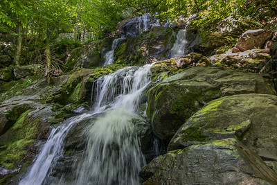Dark Hollow Falls, the first destination.