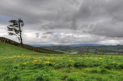 Osborne Mountain overlook