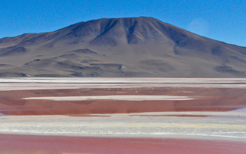 """Laguna Colorada (the """"Color Red"""", which it really was) is on the border of Chile, and FILLED with flamingos..."""