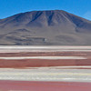 "Laguna Colorada (the ""Color Red"", which it really was) is on the border of Chile, and FILLED with flamingos..."