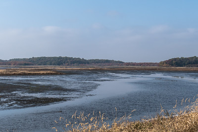 Bombay Hook National Wildlife Refuge, De.
