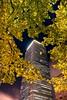 Urban Foliage Pick Print
