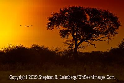 Sunset_U0U0205 web