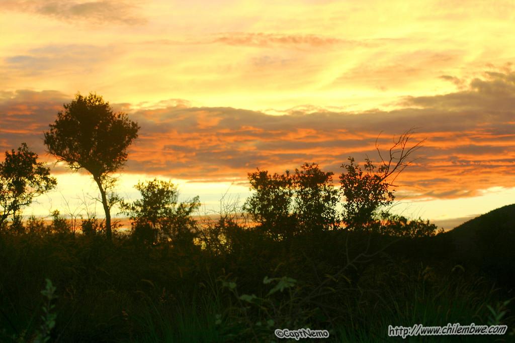 Sun set while we watch the bats exit Lobatse cave 1