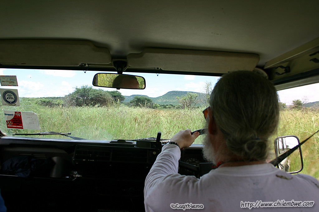 There was a road here somewhere! Bill driving through tall grass at Lobatse, Botswana