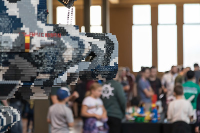Brickvention 2020-18