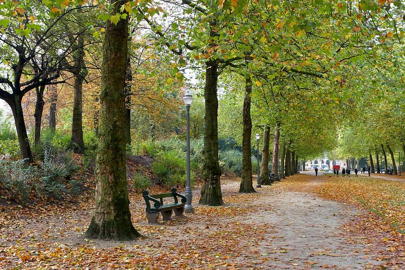Park By Royal Palace