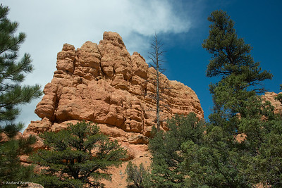 Bryce Canyon-6878