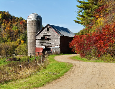 Farm in the Country