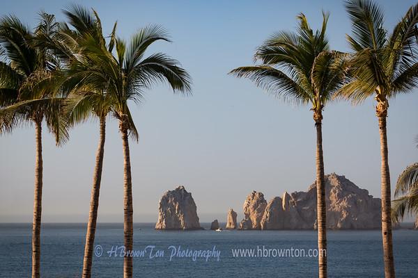 Land's End throug the Palms