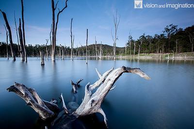 IMG_0263 Lake Tinaroo North QLD