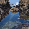 Pacific Grove tide pools