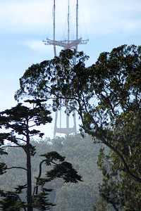 Sutro Tower as seen from Golden Gate Park A day at the California Academy of Sciences ref: 73ac13b9-6aee-45a0-87b1-0c86cb9b906b