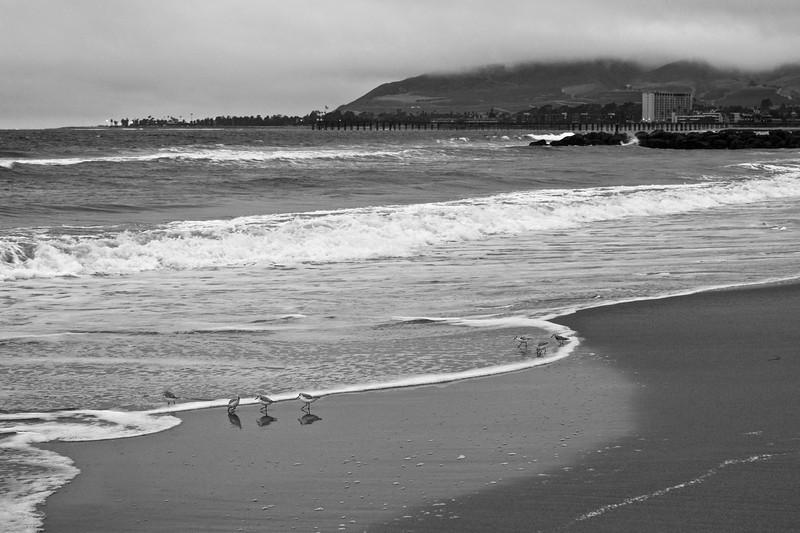 A cloudy day at Ventura Beach ref: 1191fc75-5afc-4c76-9dfd-06a001bb557c