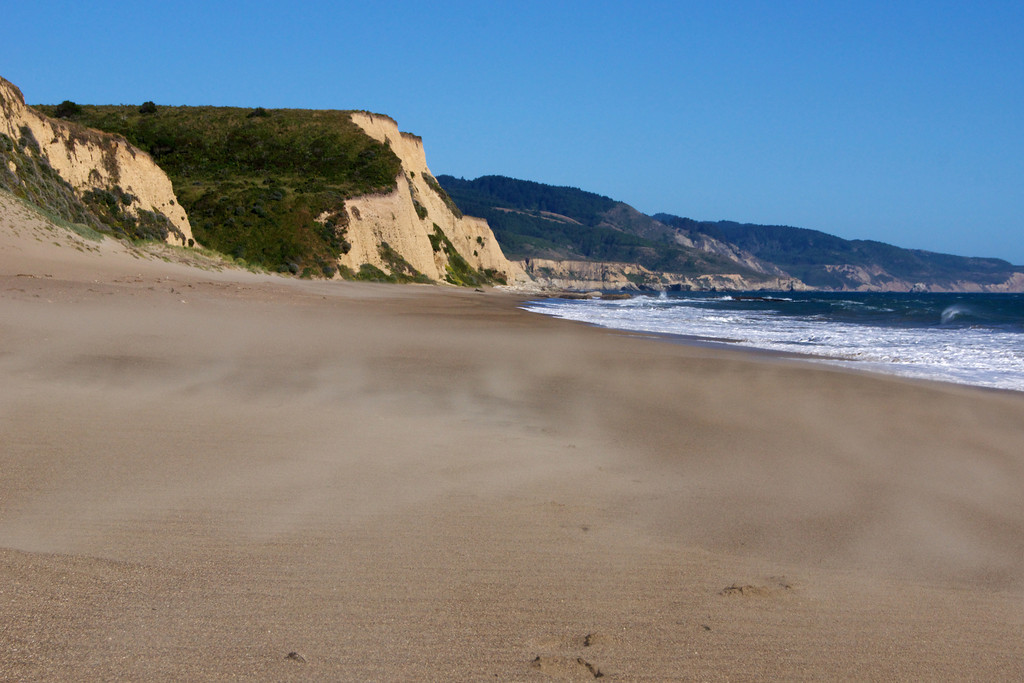 20 mile per hour winds brush Limantour Beach. ref: 38337d23-ab57-4b56-9acd-86cab929149f