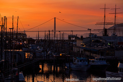 Marin Headlands and SF 11/8/09