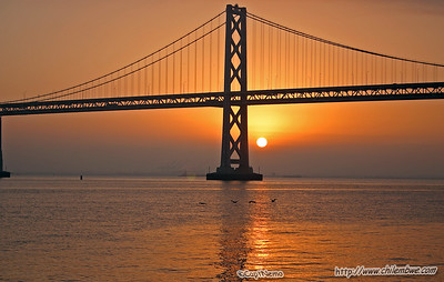 Guess I should have added a caption sooner- Sunrise under the Bay bridge, San Francisco. With some pelicans flying by.