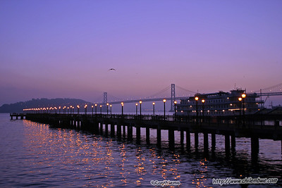San Francisco Pier in early morning twilight.