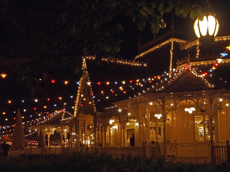 Disneyland - 15 Jan 2011