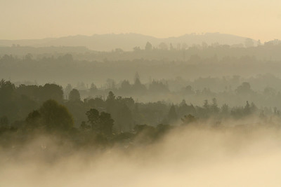 Rising Fog After Sunrise
