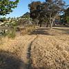 Larkspur Landing Trail