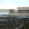 Launch for Hire - Tomales Bay