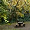 Natalie Coffin Greene Park