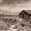 Old shed near Cima, CA - 15 Apr 2010