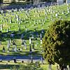 Mountain View Cemetery - Oakland